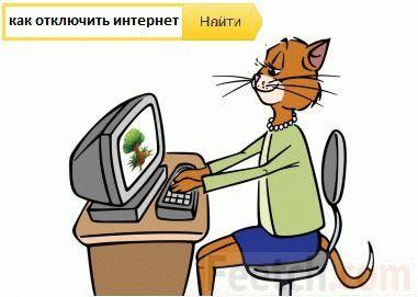 Кот пытается отключить интернет