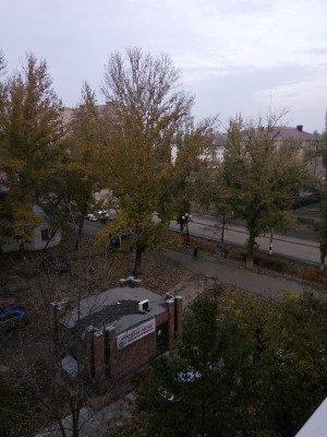 Вид на дорогу